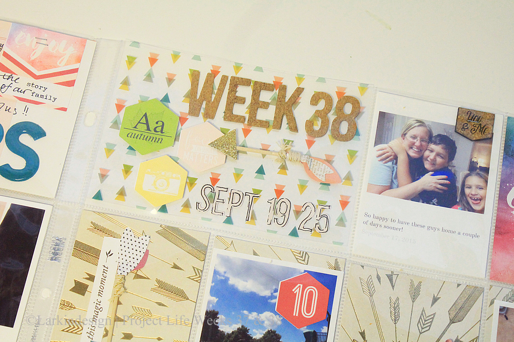Project Life Week 38