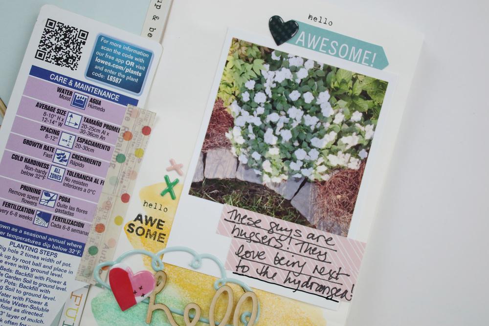 Gardener%27s Notebook Entry 03