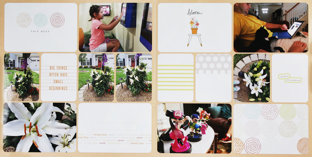 Project Life 2016 Week 28