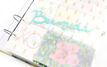 Bermuda Layout No. 03 | Introduction Pages