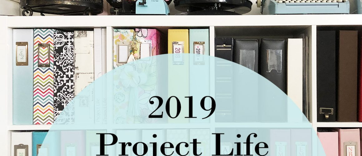 Larkindesign 2019 Project Life Introduction And Walk Through